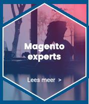 Magento experts